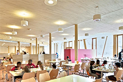 Ligno Acoustic Light Panels in School Canteens